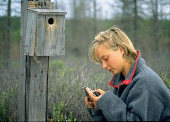 Pauline Gerrard holding a bird at the Experimental Lakes Area