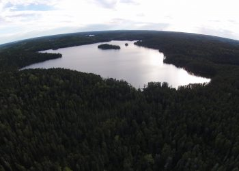 Aerial shot of a freshwater lake amid trees
