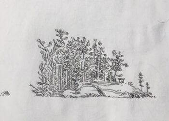 Illustration of trees and rocks