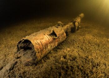 log under water by Sean Landsman
