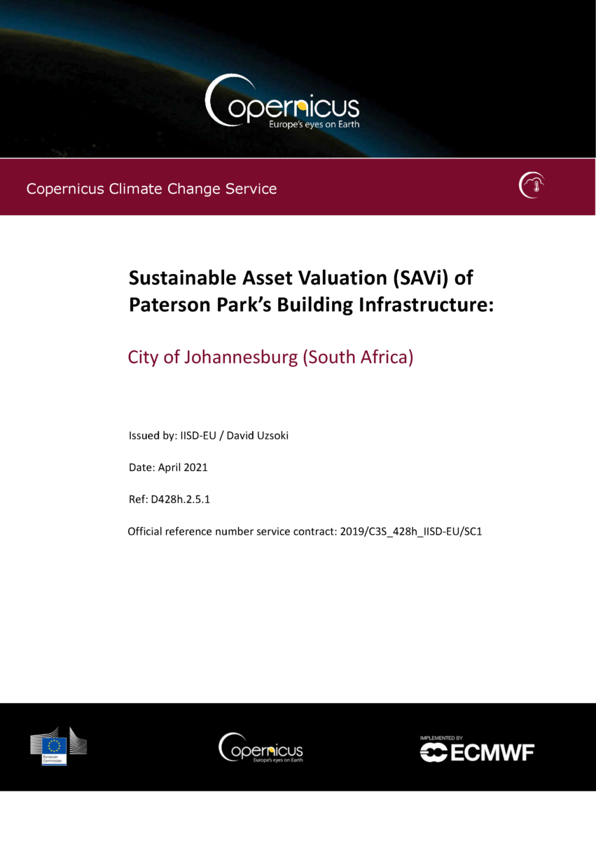 cover of the Sustainable Asset Valuation (SAVi) of Paterson Park's Building Infrastructure: City of Johannesburg (South Africa)