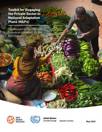 Toolkit for Engaging the Private Sector in National Adaptation Plans (NAPs)