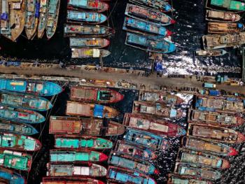 How Can We Support Fisheries During the Pandemic?