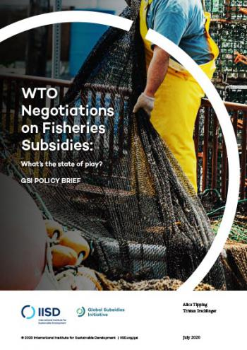 WTO Negotiations on Fisheries Subsidies: What's the state of play?