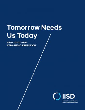 Tomorrow Needs Us Today: IISD's 2020-2025 Strategic Direction