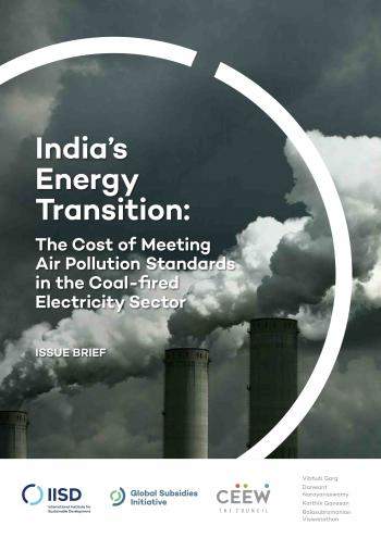 India's Energy Transition: The Cost of Meeting Air Pollution Standards in the Coal-fired Electricity Sector