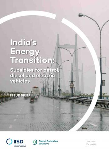 India's Energy Transition: Subsidies for gasoline, diesel and electric vehicles