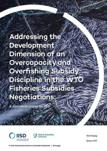 Addressing the Development Dimension of an Overcapacity and Overfishing Subsidy Discipline in the WTO Fisheries Subsidies Negotiations