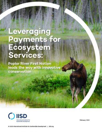 Leveraging Payments for Ecosystem Services: Poplar River First Nation leads the way with innovative conservation