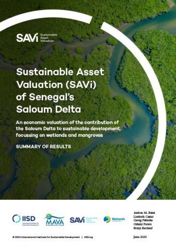Sustainable Asset Valuation (SAVi) of Senegal's Saloum Delta