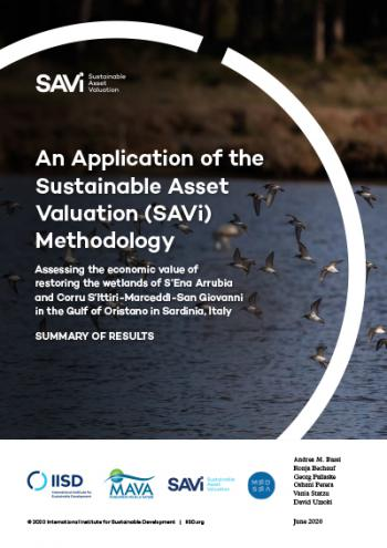 An Application of the Sustainable Asset Valuation (SAVi) Methodology: Assessing the economic value of restoring the wetlands of S'Ena Arrubia and Corru S'Ittiri-Marceddì-San Giovanni in the Gulf of Oristano in Sardinia, Italy