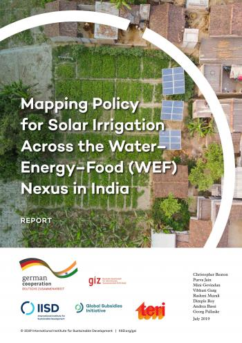 Mapping Policy for Solar Irrigation Across the Water-Energy-Food (WEF) Nexus in India
