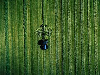 Foreign Investment in Decline: An opportunity for more responsible and sustainable food systems