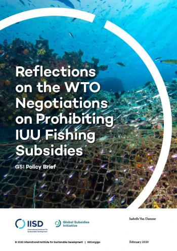 Reflections on the WTO Negotiations on Prohibiting IUU Fishing Subsidies